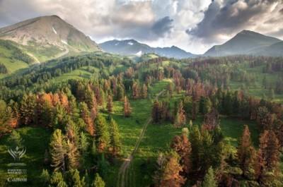 Қазақстан жері Алтай