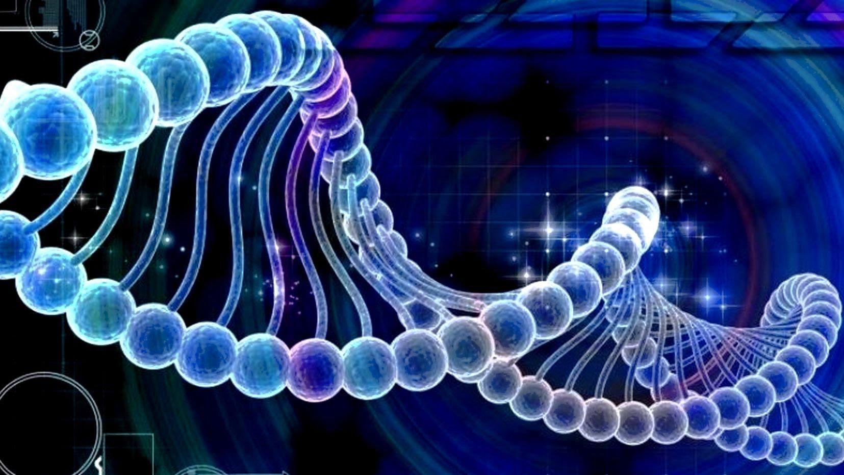 ДНҚ молекула, адам денесі