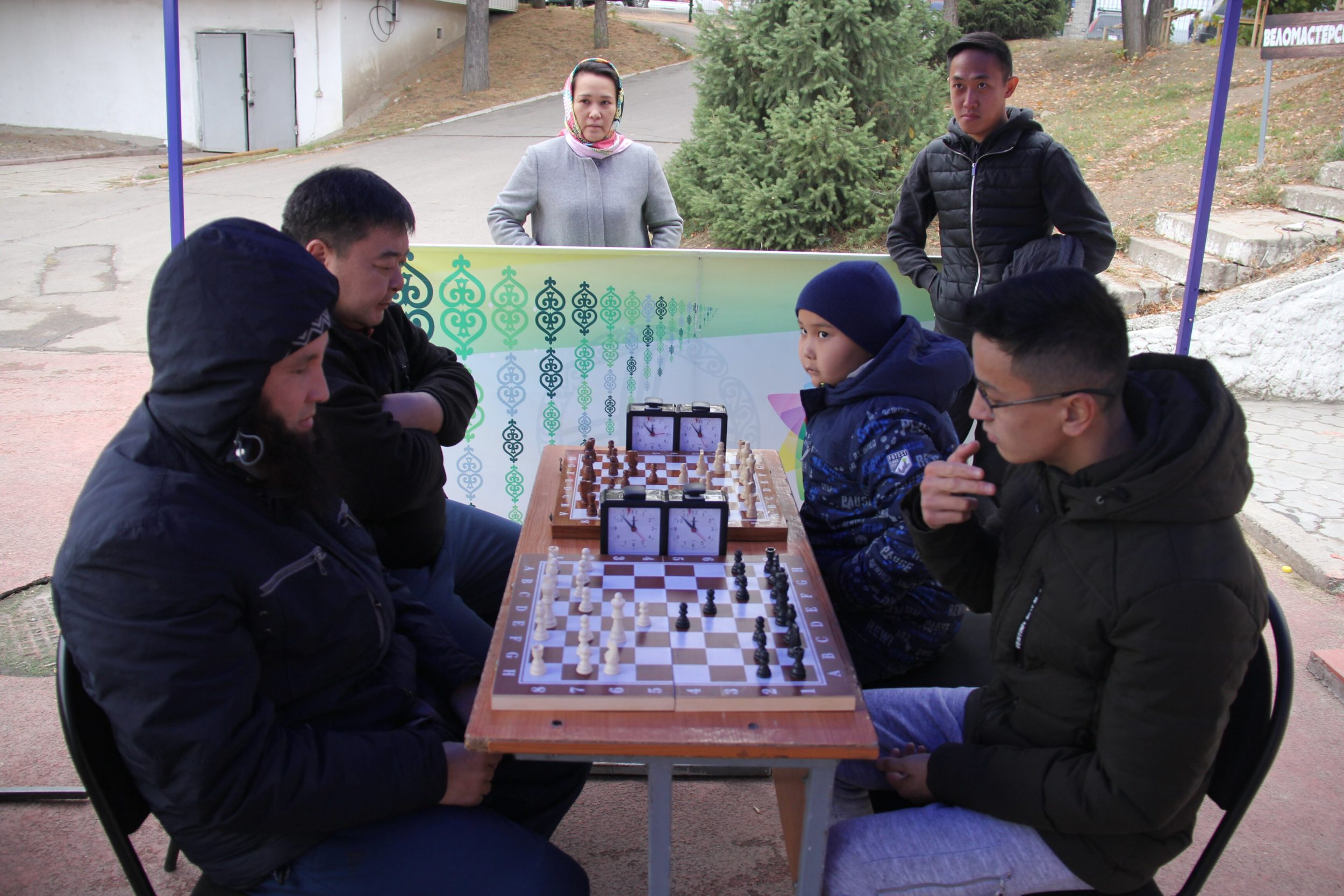 Спорт сайысы шахмат