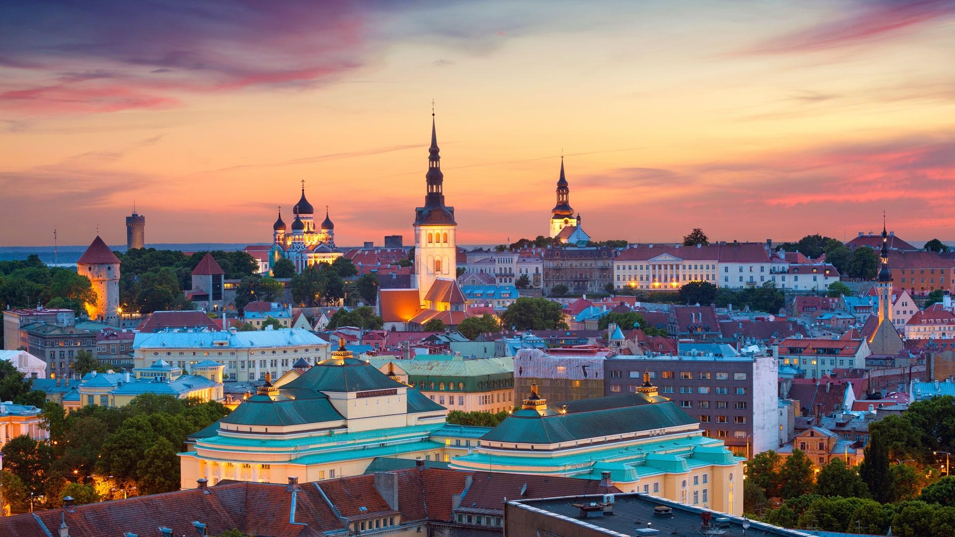 Эстония, университет